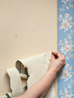 Wallpaper removal by Johnny's Painting of Polk County, LLC.